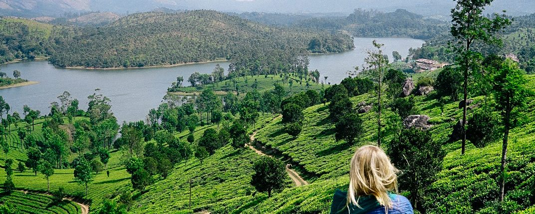 Around the World: Teas from My Travels