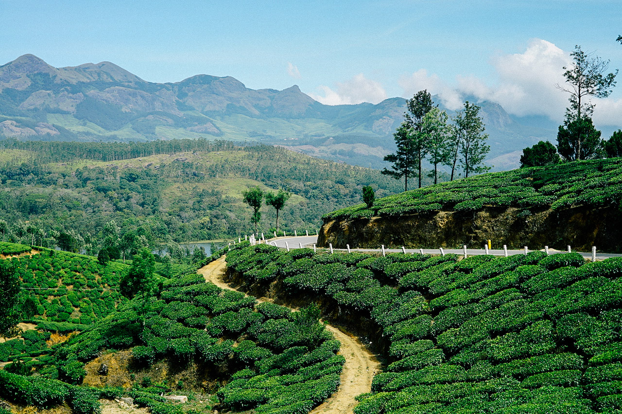 One of best places to visit in Munnar, India