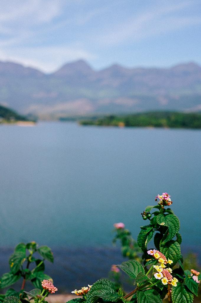 Kundala Lake, Munnar, Kerala