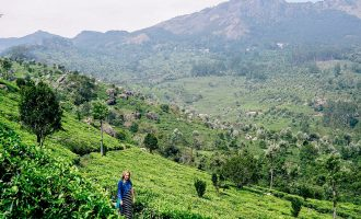 Munnar tea tour